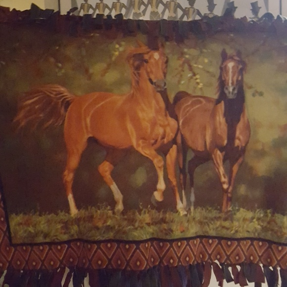 b Other - Horse Print Blanket.